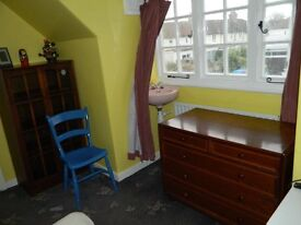 Large single & twin room, South facing, fully furnished, European house NON-SMOKING
