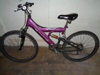 Raleigh max adults mountain bike
