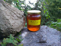 100%ECO CHESTNUT HONEY LOCALY PRODUCED IN THE ITALIAN ALPI COZIE NORTHERN PIEDMONT