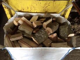 Oak firewood logs