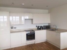 Modern 1 Bedroom Apartment for Rent - Beckenham