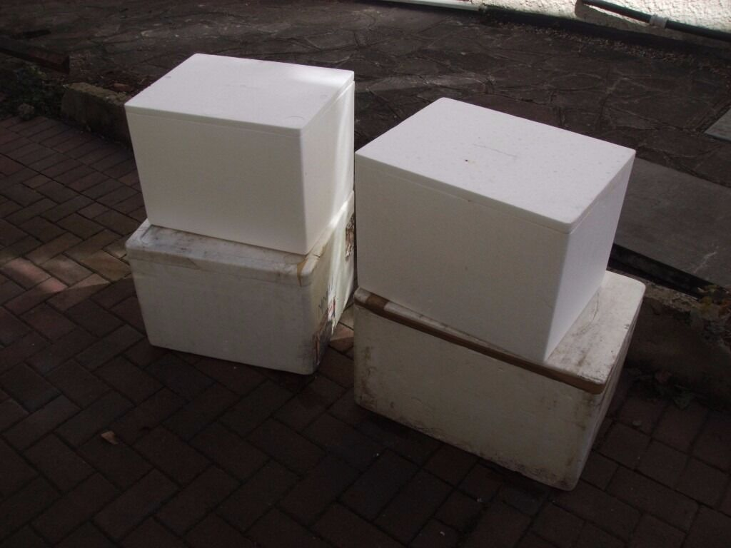 4 large thermo insulation polystyrene tropical marine fish boxes