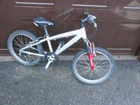"""Aluminium Frame Kids Bike 20"""" wheels Cairn Revolution"""