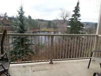 Condo at the Falls for rent (6 month Sublet)