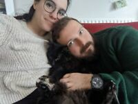 Professional couple + well behaved cat looking for a 2bed house with garden