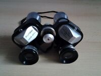 Fujiyama 7 x 25 binoculars