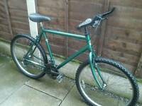 RALEIGH MOUNTAIN BIKE, 21 INS FRAME, 18 SPEED, ,,