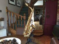 Alto Saxophone Davinci bundle