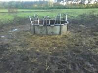Cow feeder