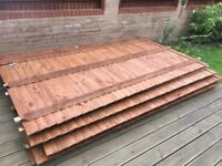 FOR SALE: x5 (5ft) high featheredge fence panels