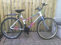MOUNTAIN BIKE, LADIES TYPE, FOR SALE.