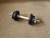 Adult's weights