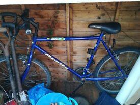 Men's apollo radiant bike used