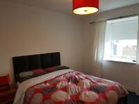 Generous double room in sunny spacious flat in Slateford
