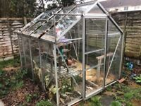 Price reduced greenhouse!