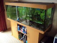 Juwel Rio 180 in beachwood marine tropical fish tank aquarium