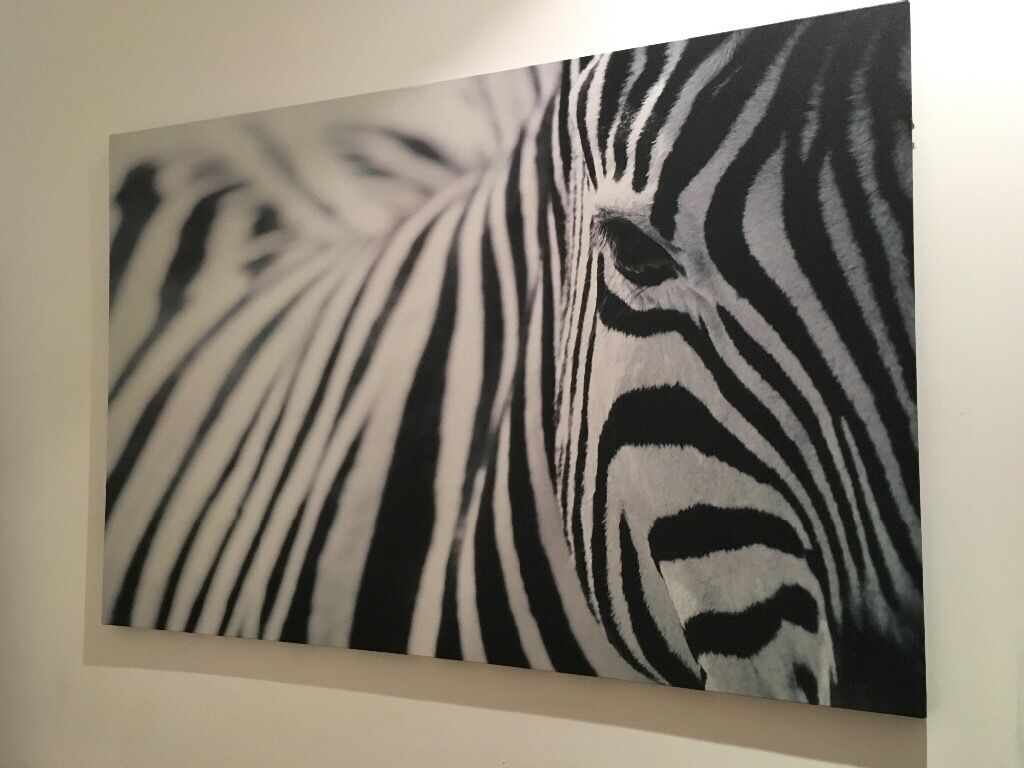 ikea zebra picture canvas in brixton london gumtree. Black Bedroom Furniture Sets. Home Design Ideas