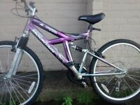 free tool kit with this family pack of bikes. 2x Adult mtbs + a 20 inch wheel BMX, 10 years and up.