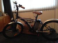 Juicy Electric Bike