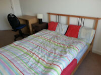 LOVELY LARGE BRIGHT SINGLE ROOM AND BIG BED IN MILE END FROM 15 September - GIRL OR GUY - All bills