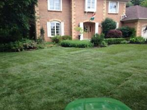 Grass cutting only or total property maintenace London Ontario image 5