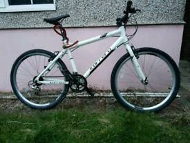 Carrera bicycle (26)