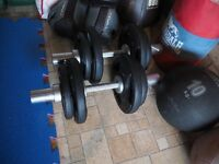 Olympic fit adjustable dumbbell set; plates, bars & collars