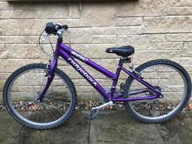 "Children's Ridgeback Bike 24"" wheels"