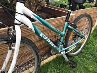 Giant Mountain Bike (FREE DELIVERY)