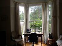 SPACIOUS GROUND FLOOR TWO ROOM STUDIO