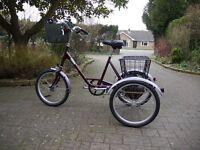 Picador Pashley Tricycle