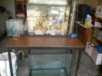 2 -90 gallon saltwater tanks and stuff!