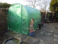 POLYTUNNEL GREENHOUSE 3 x 2 MTRS + MANY EXTRAS