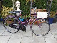 vintage ladies purple holland 20 inch wheel bike with basket