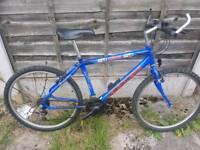 Very rare, retro Pepsi Max bike