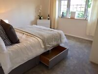 3, 4 or 5 BED PROPERTIES NEEDED IMMEDIATELY FOR PROFESSIONAL LETS
