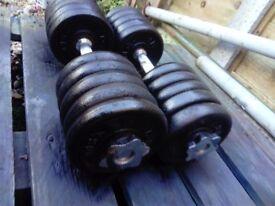 York Weights set dumbbells 2 x 27 kg