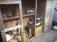8ft x 3ft wooden cattery
