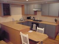 Christmas or New Year/Hogmanay holiday rental. Whole flat or single room