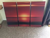 Collection of canvasses