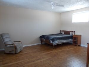 Bachelor apartment between Lambeth & Delaware. Available now