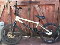 X rated bmx bike. Can deliver