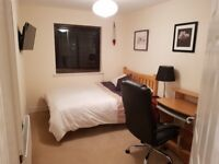 Double Room in Luxury Home