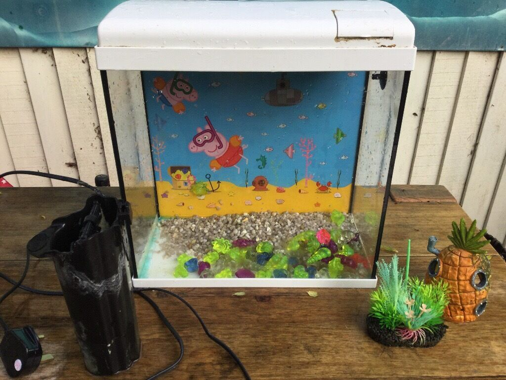 kids fish tank with peppa pig background filter gravel