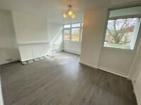 Prime Location Recently Renovated 3 Bedrooms Maisonette just behind Stepney Green Station