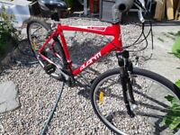 Avanti Expedition Bile (large) for sale