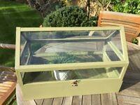 Miniature greenhouse