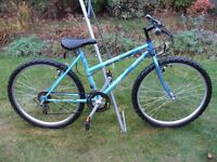 Ladies/Girls Mountain Bike 26in Wheel 17.5in Frame 12 Gears In Excellent Condition