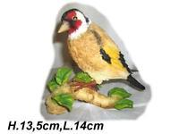 Sehr dekorativer schöner Vogel Schleswig-Holstein - Norderstedt Vorschau