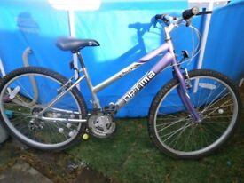 ladys bike 26 inch wheels